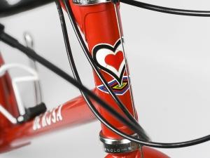 0005685_de-rosa-mtb-bike